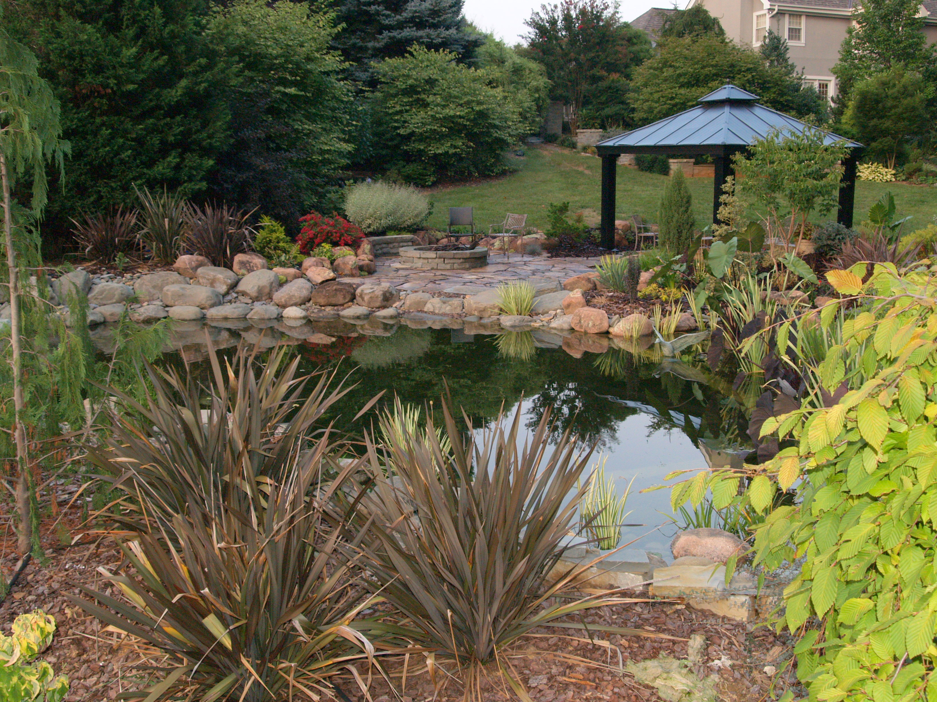 the swimming pond ramblin u0027 through dave u0027s garden