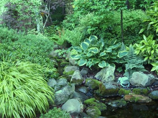 Hosta and Japanese Forest grass border a stream