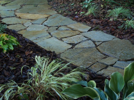 The newly constructed stone path is bordered by hostas and Japanese Forest grass. the planting is a little sparse today, but it will fill quickly in the spring.