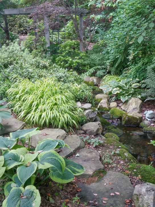 Hostas, Japanese Forest grass, ferns, and sweetbox border this shaded, constructed stream that meanders to a small pond.